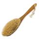 Щетка для сухого массажа кактус (тампико) жёсткая